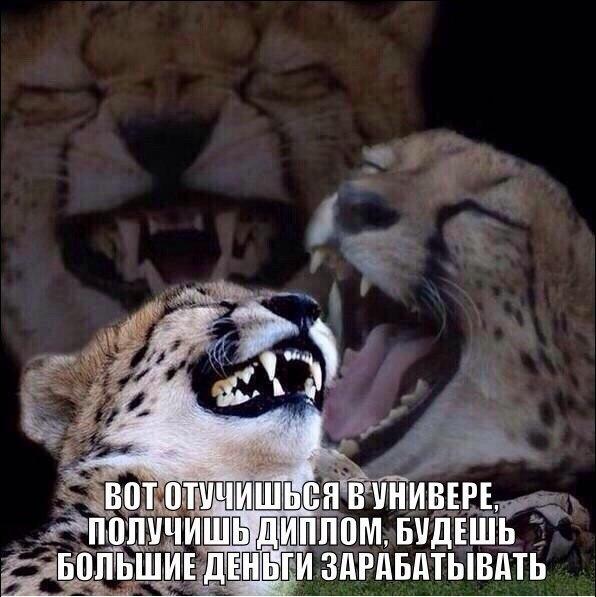 ocZDvnUBg3E