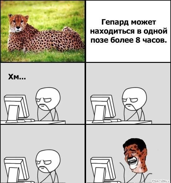 Pr8RGOybsQk